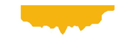 visit mckinney logo.png
