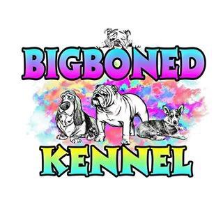 Big Boned Kennel