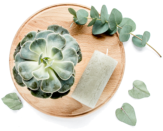 Flote-Candle-Succulent.png
