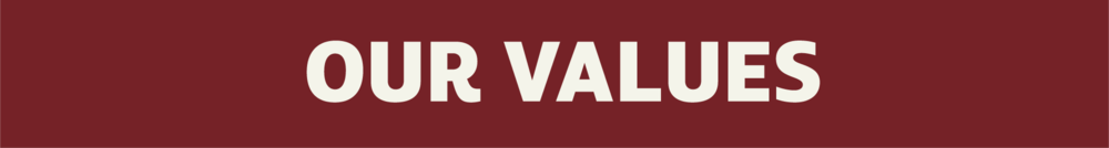 OUR VALUESbanner.png