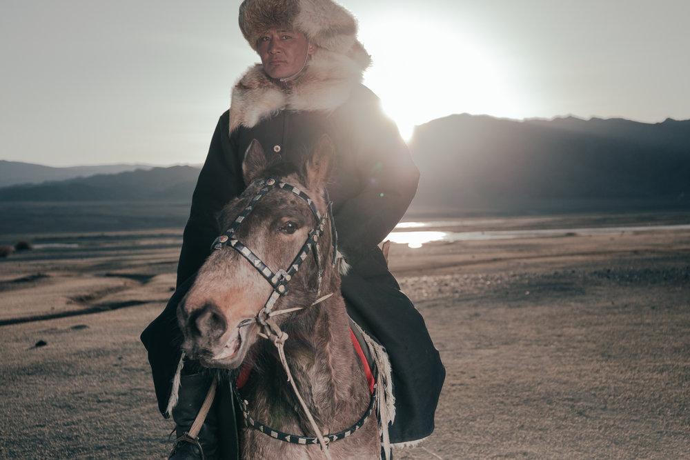 Kazakh_horse_sunset.jpg