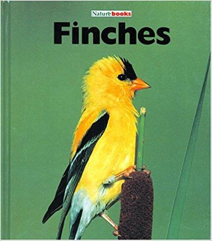 Finches.jpg