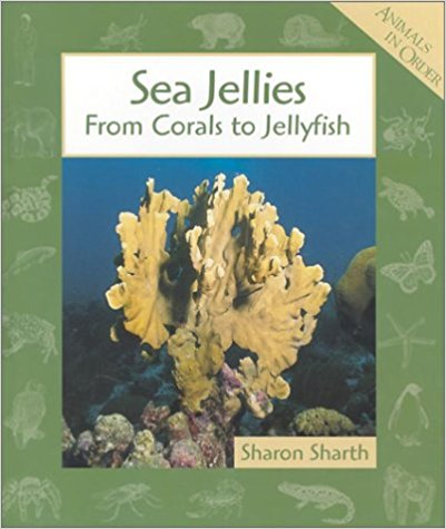 Sea Jellies From Corals to Jellyfish.jpg