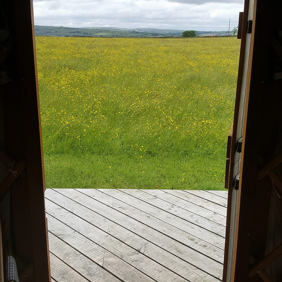 view from Blackberry door.jpg