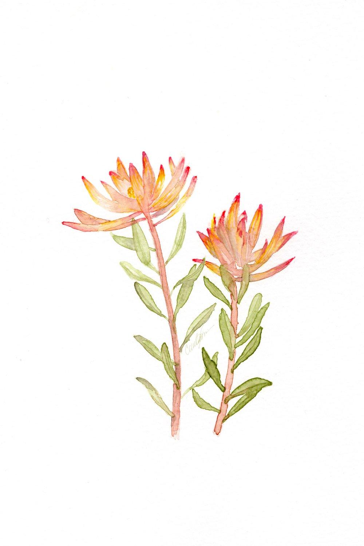 Flower_1.3.jpg