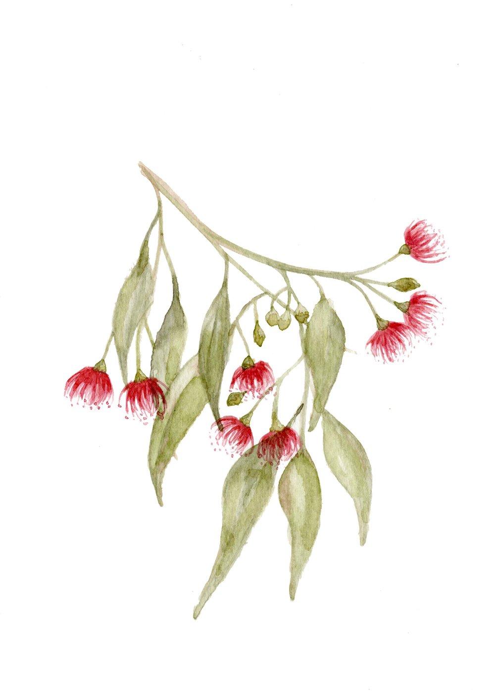 Flower_3.3.jpg
