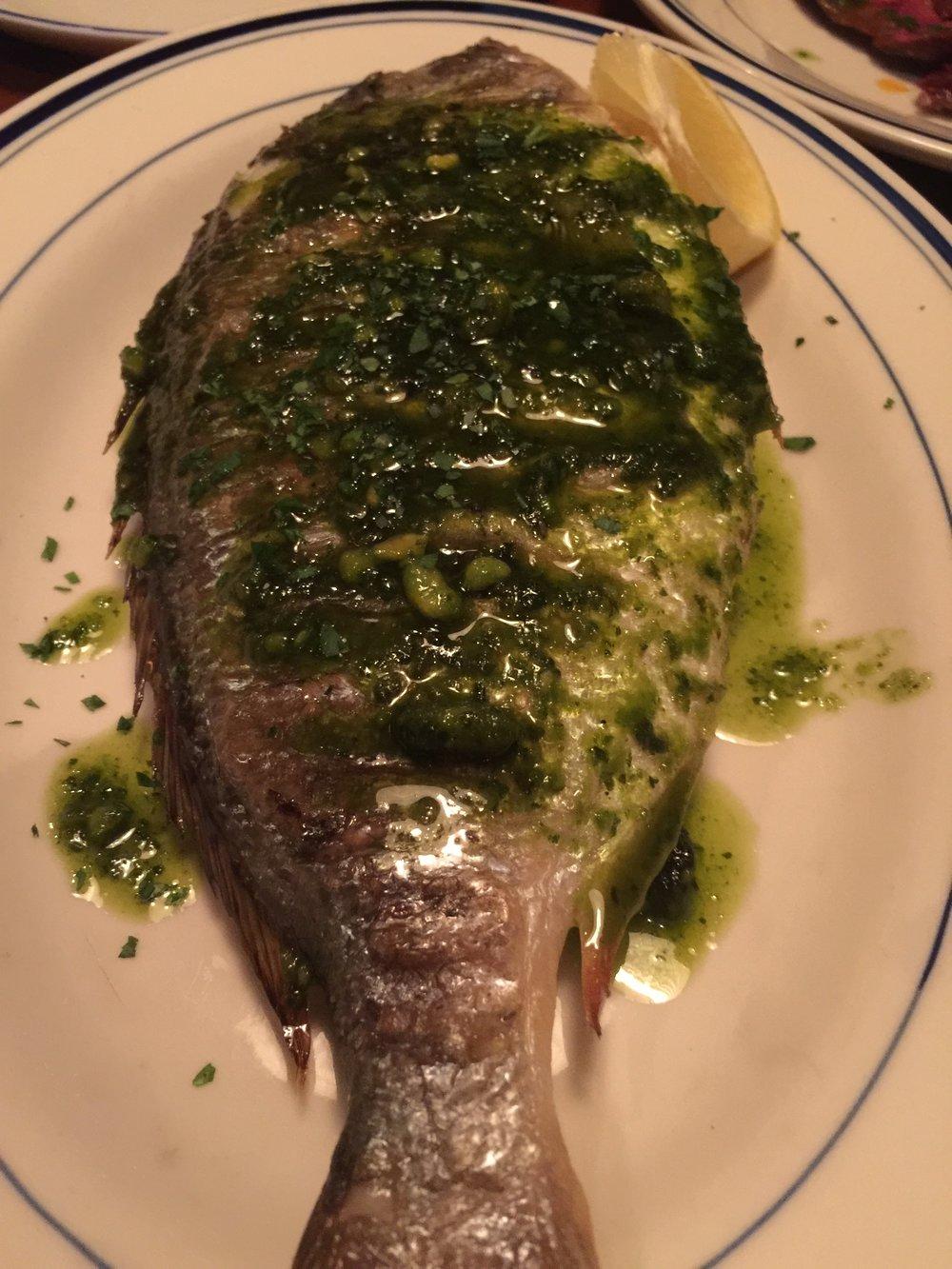 Rotorino Fish.jpg
