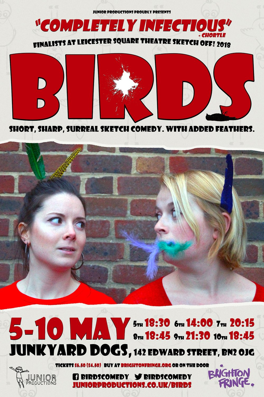 Official Brighton Fringe poster for Birds.