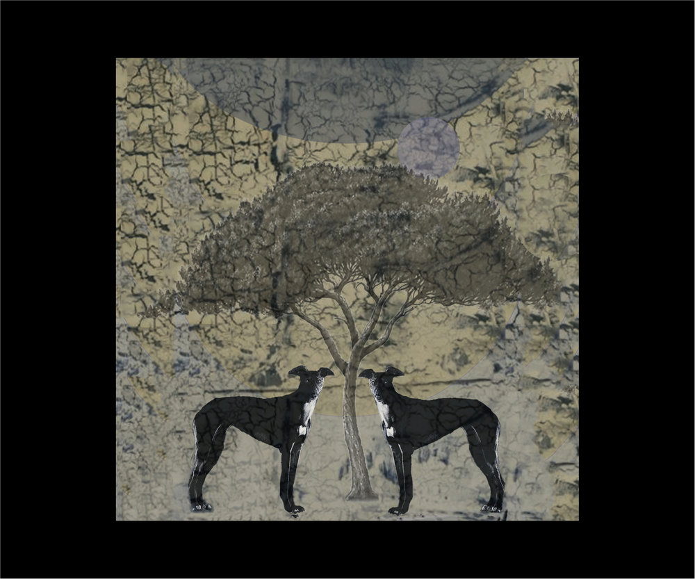 Two Dark Hounds -Squared.jpg