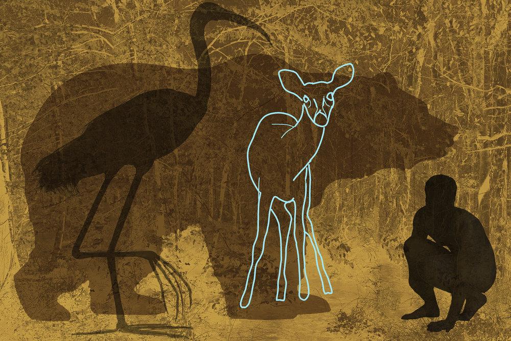 Bear, Crane, Man wo Deer-Edit-2.jpg