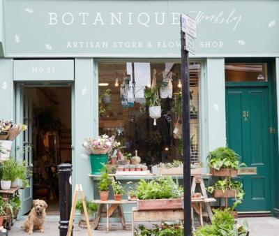 botanique.jpg