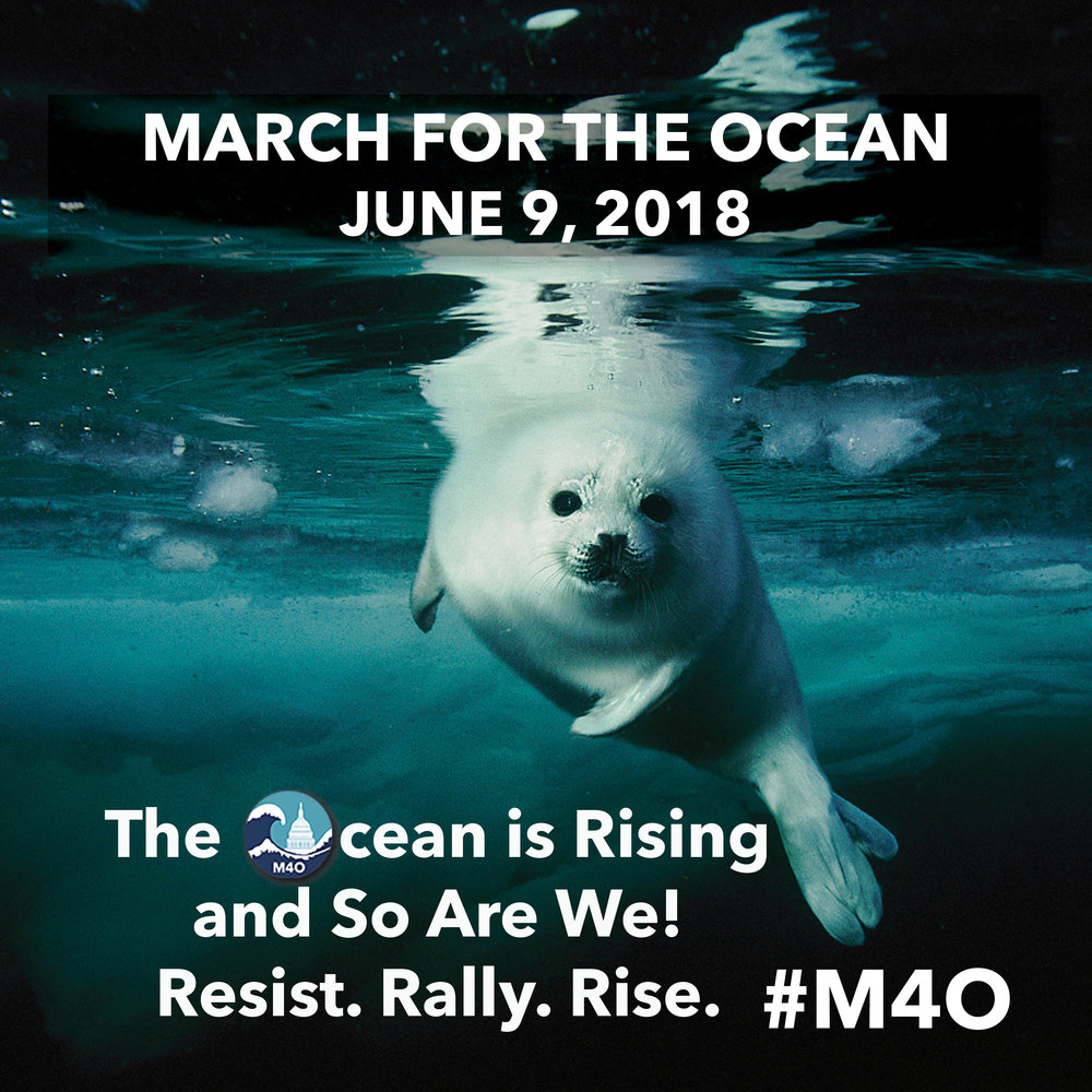 #TheOceanIsRising #AndSoAreWe
