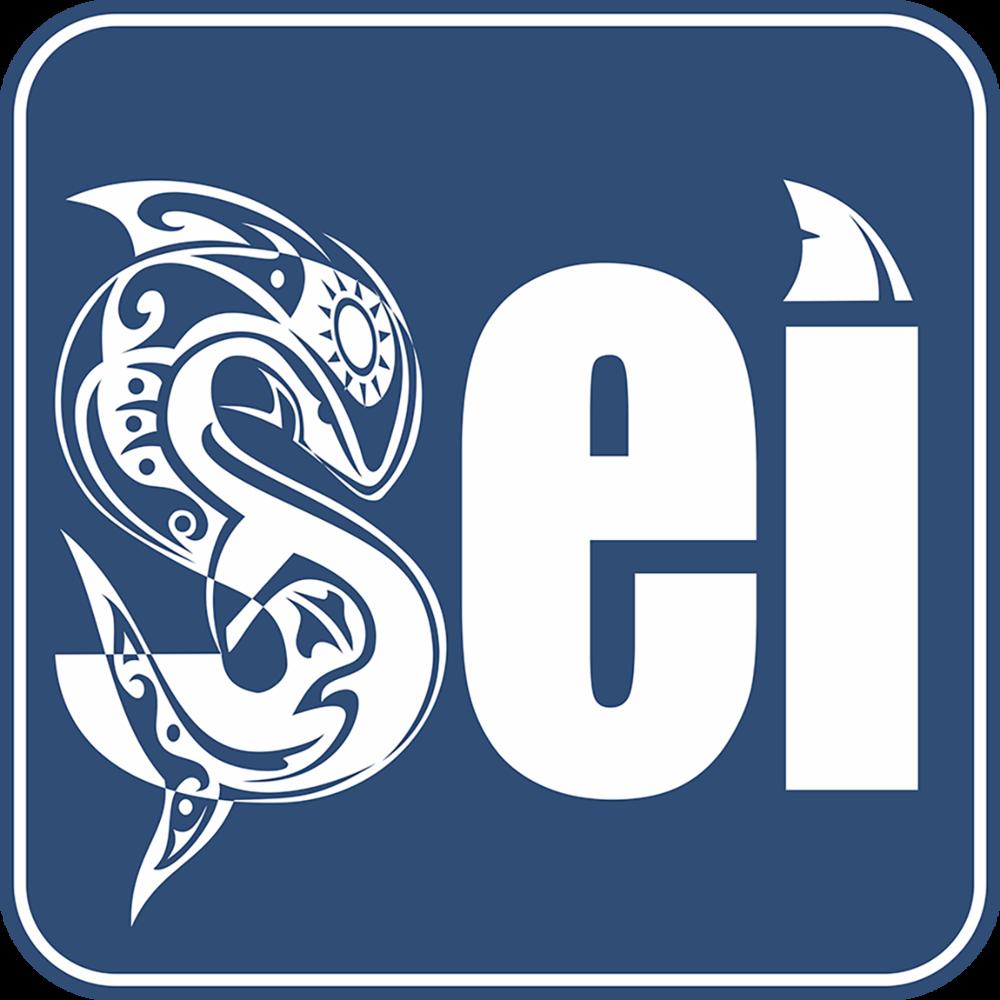 SEI-logo.png