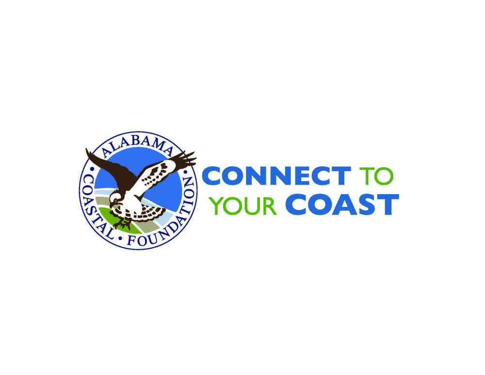 ACF-horz-logo-web.jpg