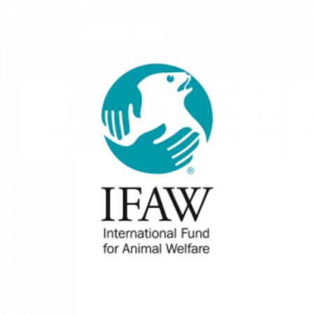 IFAW_logo.png