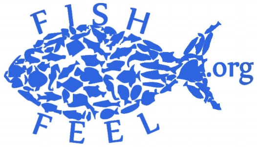 Fish Feel logo in blue.jpg