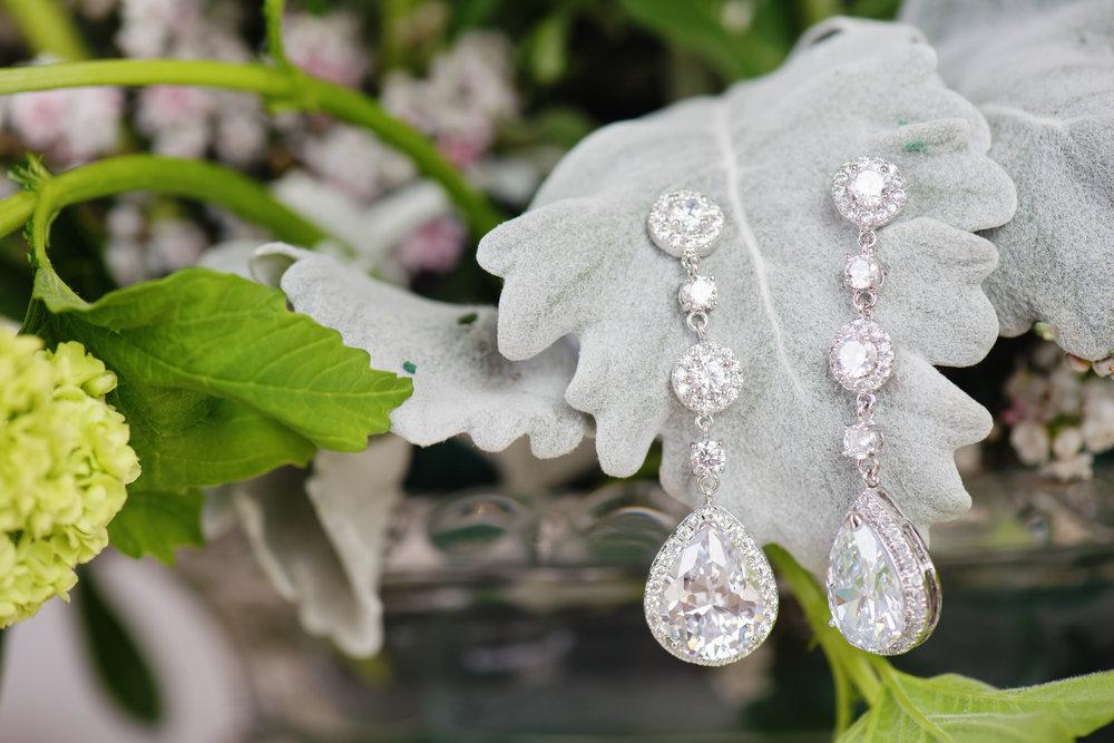 Ludwig photography silver earrings.jpg