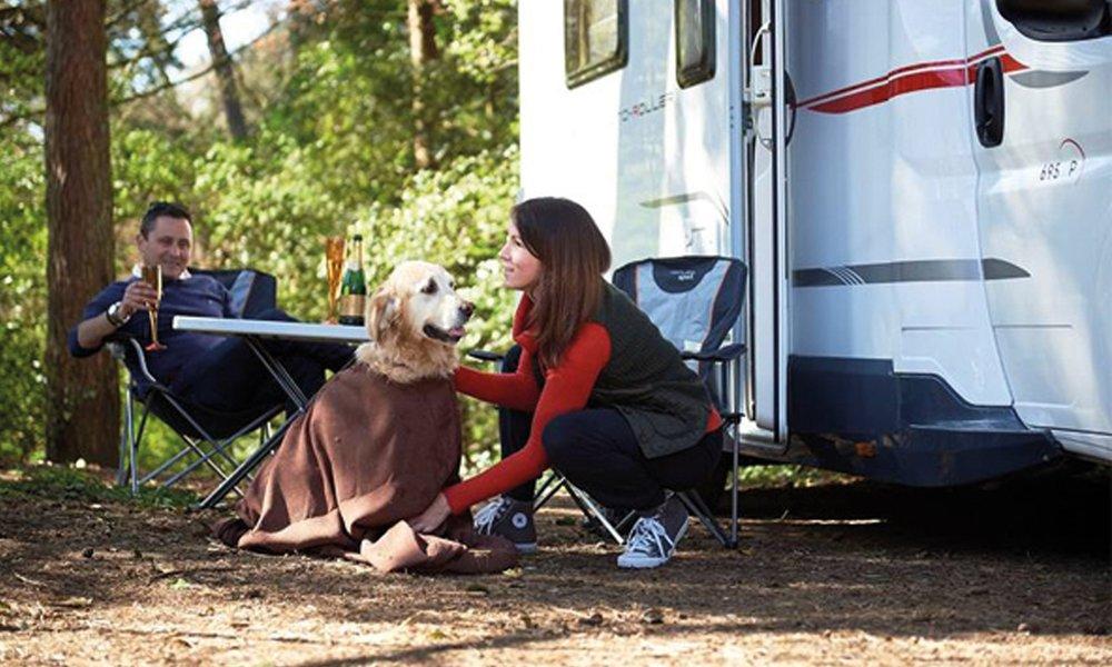 campling.jpg