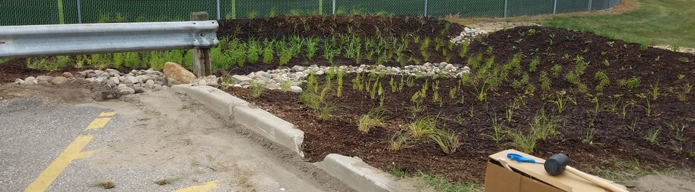 Rainscaping demonstration site at West Catholic High School, in the Indian Mill Creek watershed. Learn more at  lgrow.org/rainscaping
