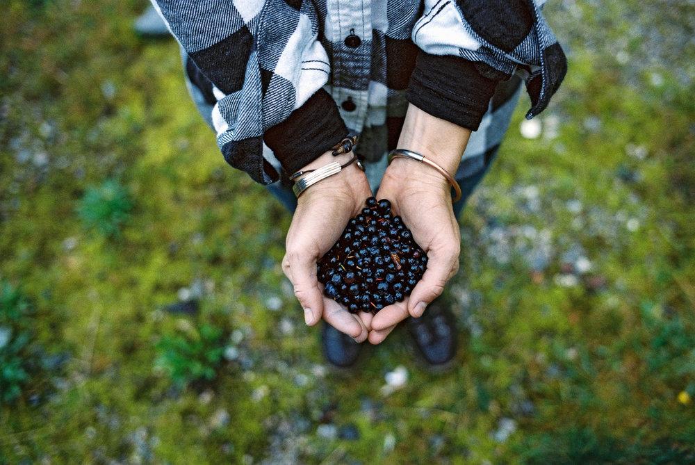 JBP_Website_The Wrong Way-Norway-8.jpg