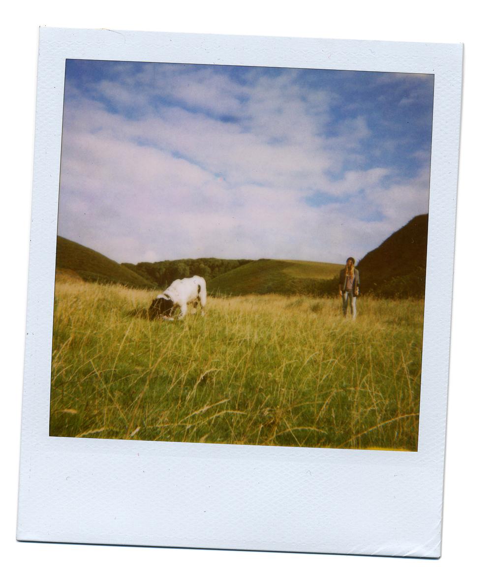 JBP_Polaroid-0003-5.jpg
