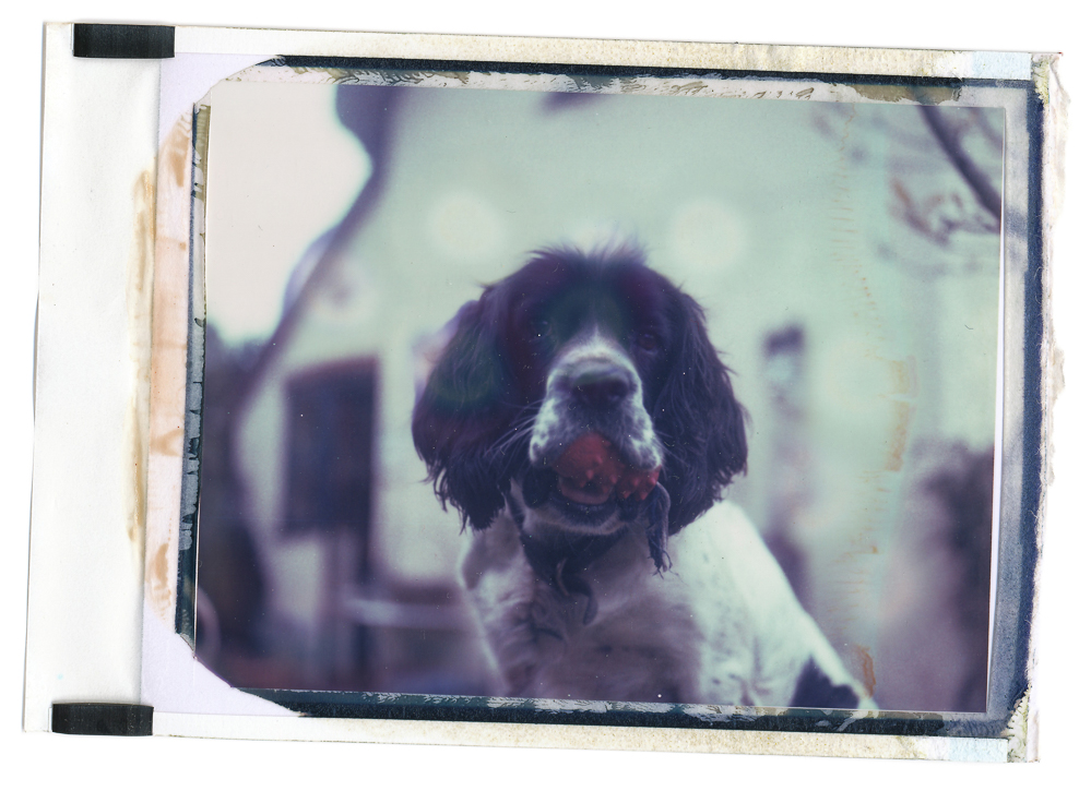 JBP_Polaroid-0004-3.jpg