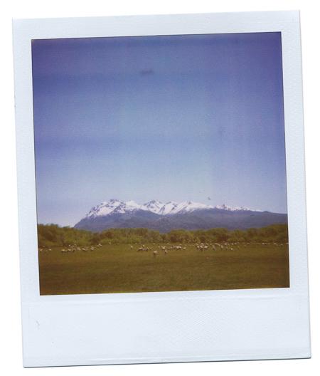 JBP_Polaroid-0012.jpg