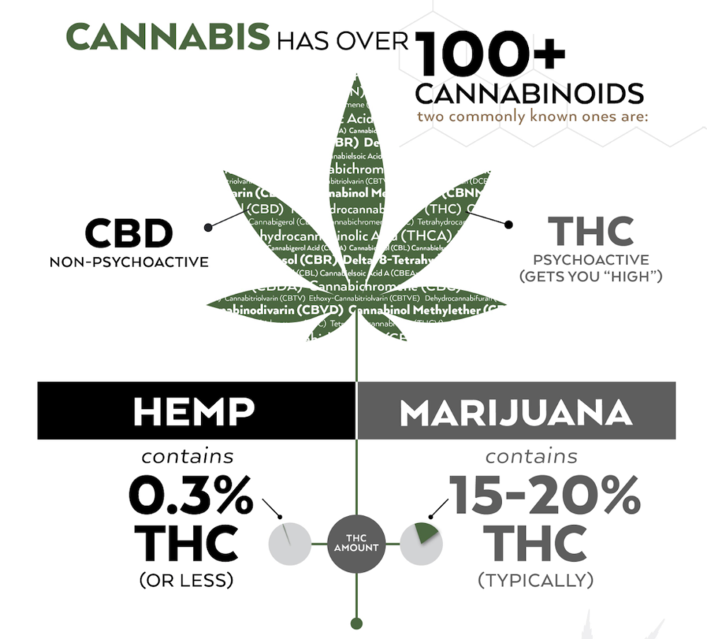 Watch the THC - The naturally occurring THC in hemp has a 10% chance of showing up on drug tests when ingested. Not all CBD brands label this. Some manufacturers make THC free products which are ideal for people who are drug tested by their employers.