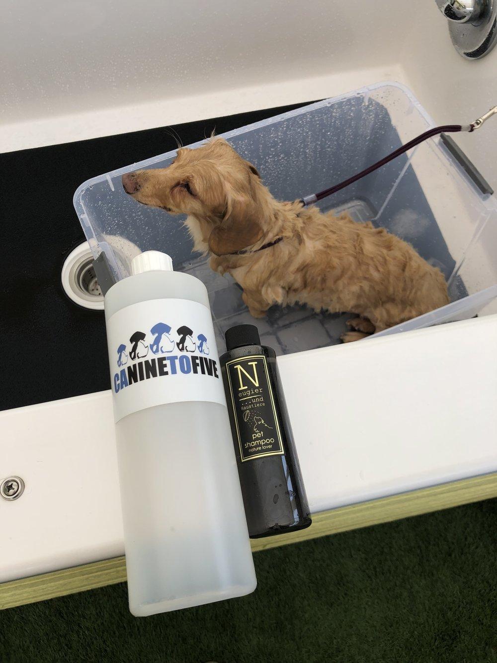 Making shampoo