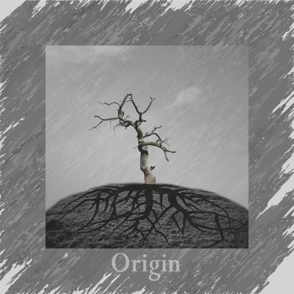 Origin - A pure melodic metal album. Hard riffs, punchy drums, and symphonic elements.