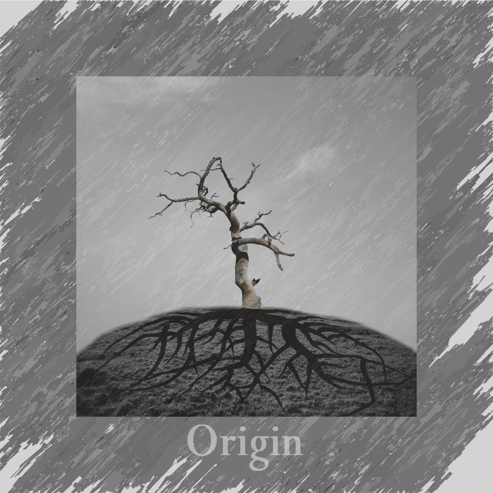 Origin - A pure melodic metal album. Hard riffs, punchy drums, and symphonic elements.