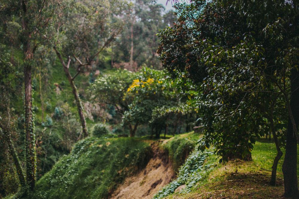 Bryden Giving Photographer-Wedding Photographer-Minneapolis-Minnesota-Saint Paul-Ecuador-Amazon-Quito-Photojournalism-Lifestyle-Yunguilla-Destination Wedding Photographer