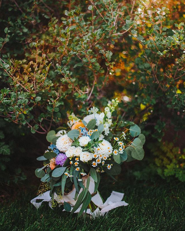 Is it odd that I want to ask my brides if I can have their old bouquets so I can utilize them as vintage decor? Anyone? Help a boy out.⠀ ...⠀ ...⠀ ...⠀ ...⠀ #photobugcommunity #wanderingweddings #authenticlovemag #losangelesweddingphotographer #shootandshare #californiaweddingphotographer #loveandwildhearts #twincitiesphotographer #minnesotaweddingphotographer #destinationweddingphotographer #elopementphotographer #radlovestories #muchlove_ig #utahweddingphotographer #junebugweddings #denverweddingphotographer #bohowedding #portlandweddingphotographer ⠀ #dirtybootsandmessyhair #belovedstories #seattleweddingphotographer #indiebride #bohobride #palmspringsweddingphotographer #duluth #destinationduluth #minnesotabride #huffpostido #instagood #instadaily ⠀