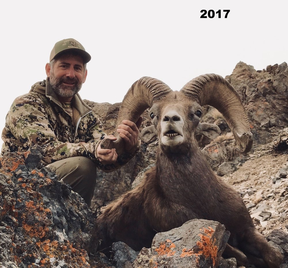 big-horn-sheep-hunt.jpg