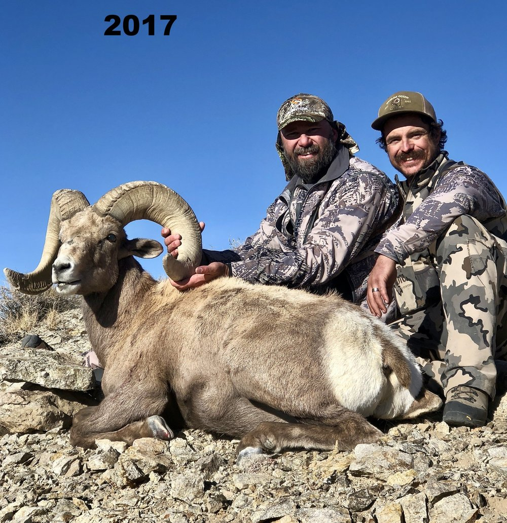 big-horn-sheep-hunt6.jpg