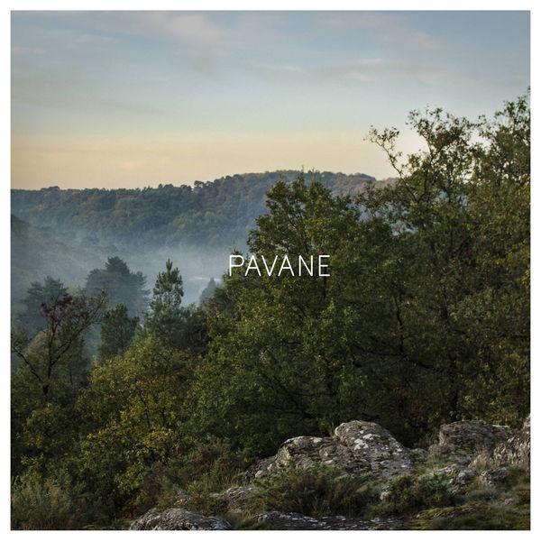 Pavane - pppp (2016)  Présenté par l'artiste Le Studio