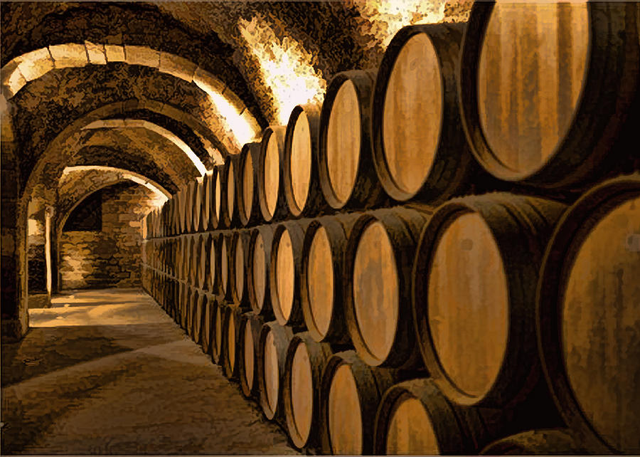 alley-of-barrels-at-the-winery-elaine-plesser.jpg