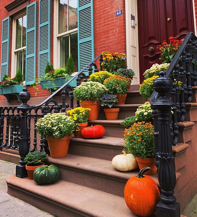 Get your stoop ready for Fall with us. #manscapersny 🍂🍁🎃🍁🍂