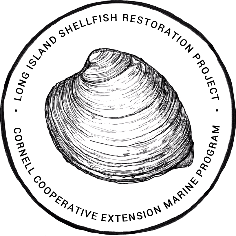 Long Island Shellfish Restoration Project