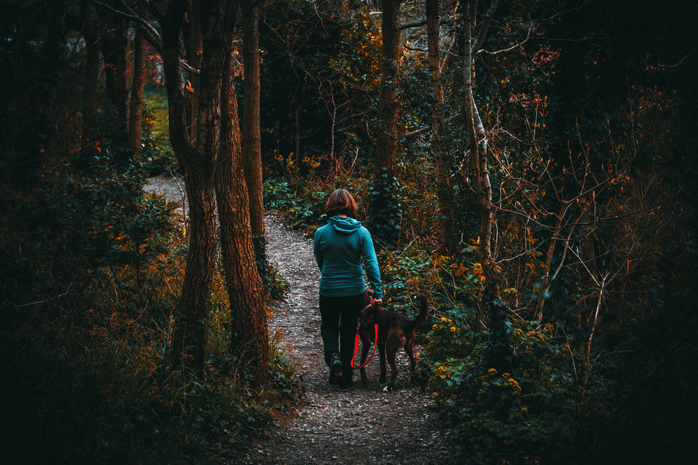 woman-walking-through-woods-with-dog.jpg