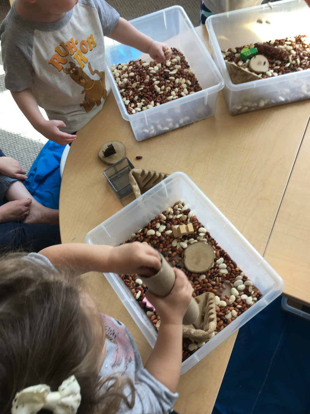 Newburyport Toddler Class Sensory Bin