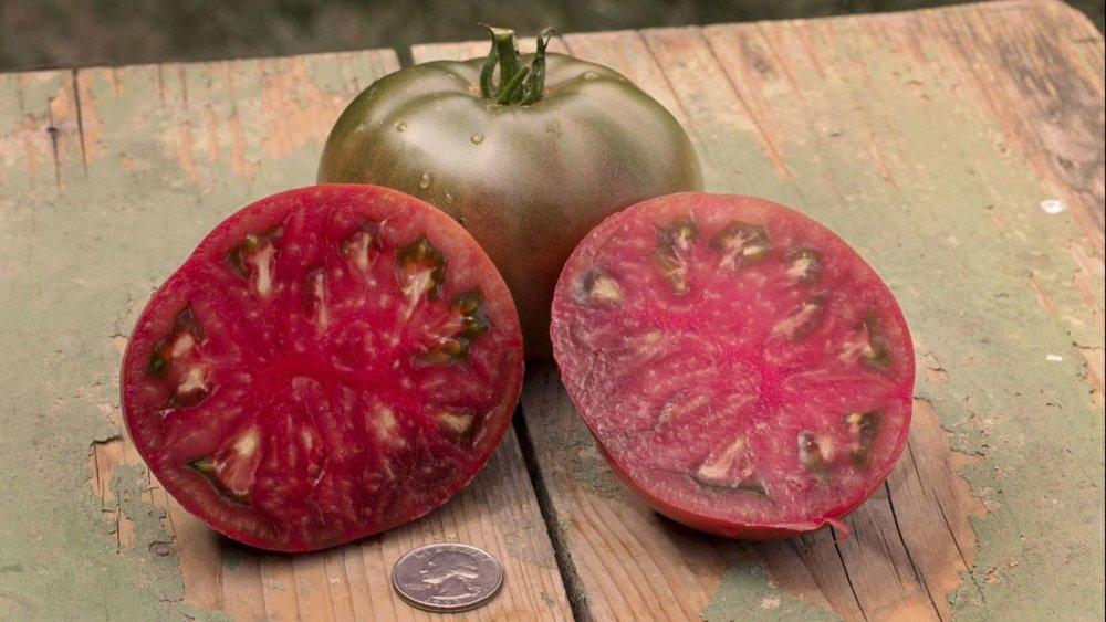 Cherokee Purple tomatoes (Sam Hamann / Tomatomania)