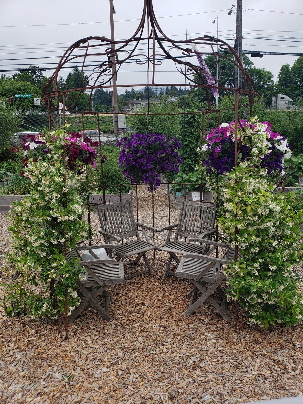 Community Garden Photo 1.jpg
