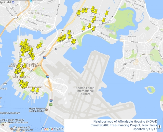 2017 Trees Planted - This map, created by N-YO, shows all the new trees that were planted by the City of Boston in 2017 in collaboration with NOAH.