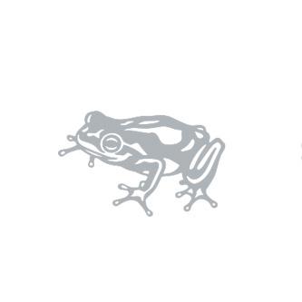 StrongStudio_ClientLogos_Frog.jpg