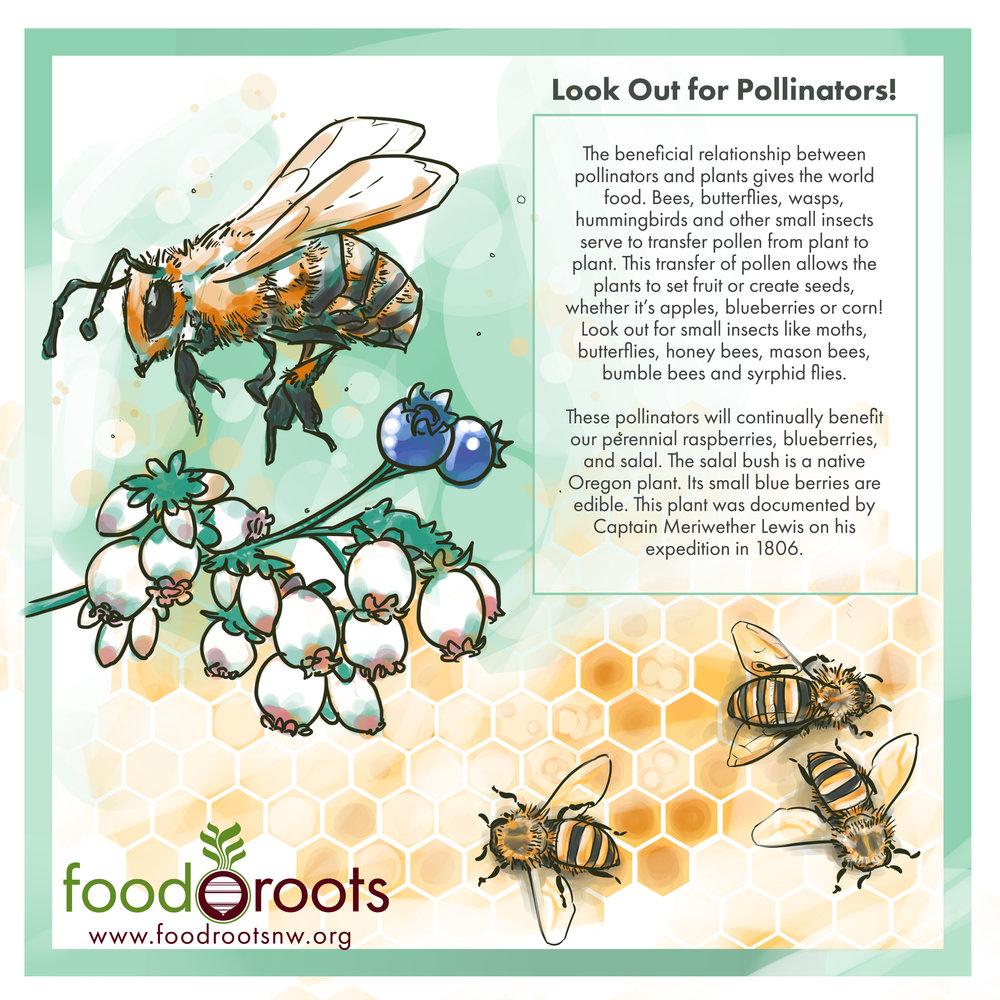 pollinator-large.jpg