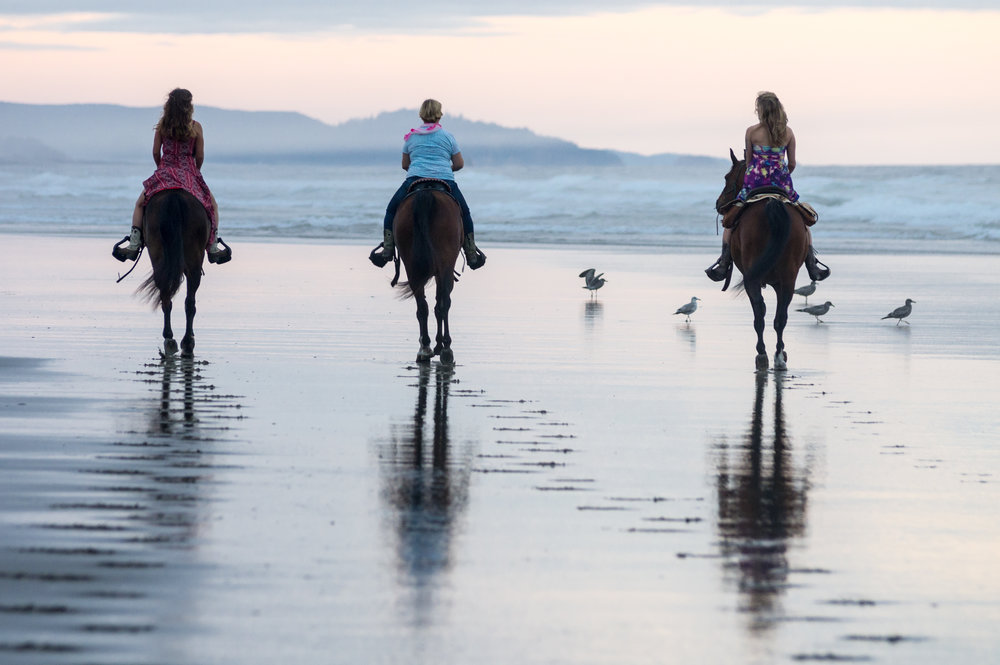 Manzanita-Horses-138-BrokenBanjo.jpg