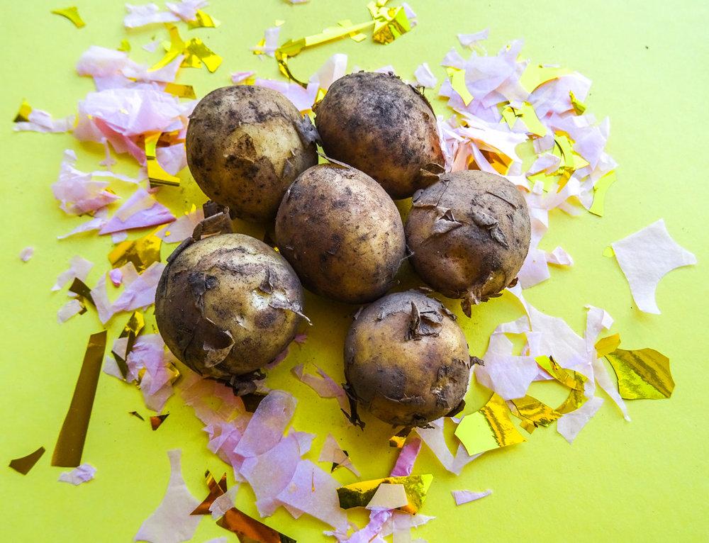 Svensk färsk potatis