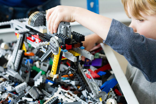 Fort Worth Kids Entertainment   LEGO Collector Store   About Rogue ...