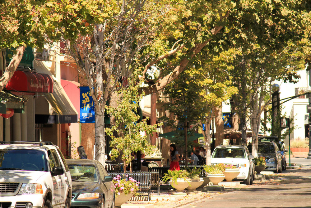 Sunnyvale-13-X2.jpg